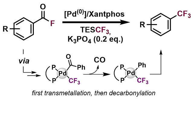 "<p class=""font_8""><strong>Palladium-Catalyzed Decarbonylative Trifluoromethylation of Acid Fluorides</strong></p>"