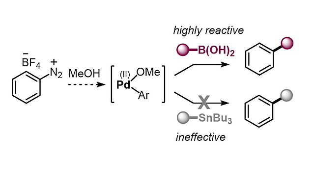 """<p class=""""font_8""""><strong>Base-Free Cross-Couplings of Aryl Diazonium Salts in Methanol: Pd(II)–Alkoxy as Reactivity-Controlling Intermediate</strong></p>"""