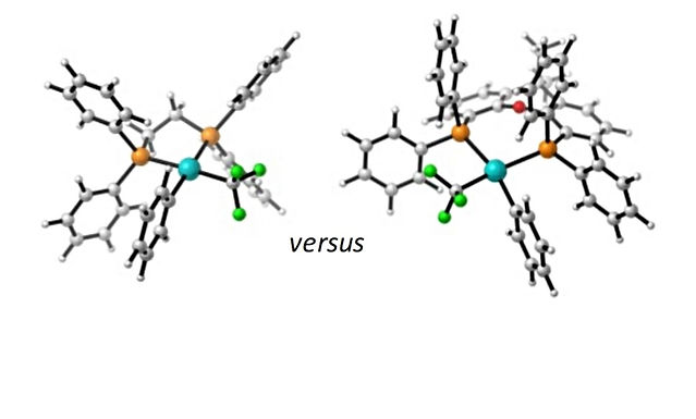 """<p class=""""font_8""""><strong>Reductive Elimination of ArCF₃&nbsp;from Bidentate Pd(II) Complexes - A Computational Study</strong></p>"""