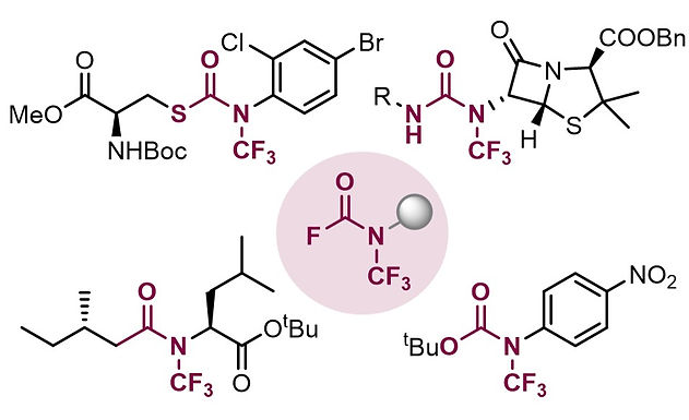 """<p class=""""font_8""""><strong>Straightforward Access to </strong><em><strong>N</strong></em><strong>-Trifluoromethyl Amides, Carbamates, Thiocarbamates and Ureas</strong></p>"""