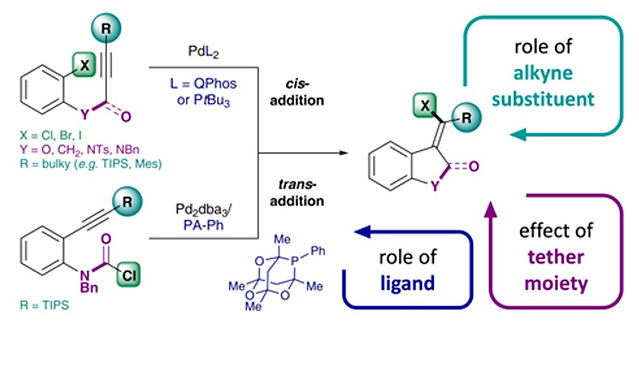 """<p class=""""font_8""""><strong>Mechanistic Insights on the Pd-Catalyzed Addition of C-X Bonds across Alkynes – A Combined Experimental and Computational Study</strong></p>"""