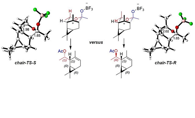 """<p class=""""font_8""""><strong>Tandem crossed-dimerisation/oxonia-Cope sequence of different carbonyl compounds to homoallylic esters and lactones</strong></p>"""