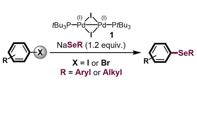 """<p class=""""font_8""""><strong>Selenolation of Aryl Iodides and Bromides Enabled by a Bench-Stable Pd(I) Dimer</strong></p>"""