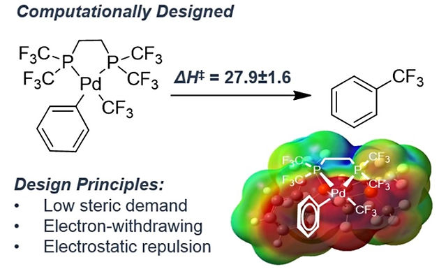 """<p class=""""font_8""""><strong>Computational Ligand Design for the Reductive Elimination of ArCF₃&nbsp;from a Small Bite Angle Pd(II)-Complex: Remarkable Effect of a Perfluoroalkyl Phosphine</strong></p>"""