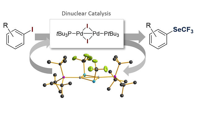"""<p class=""""font_8""""><strong>Highly Efficient C-SeCF₃ Coupling of Aryl Iodides Enabled by an Air-Stable Dinuclear Pd(I) Catalyst</strong></p>"""