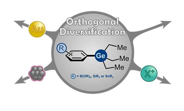 """<p class=""""font_8""""><strong>Organogermanes as Orthogonal Coupling Partner in Synthesis &amp; Catalysis</strong></p>"""