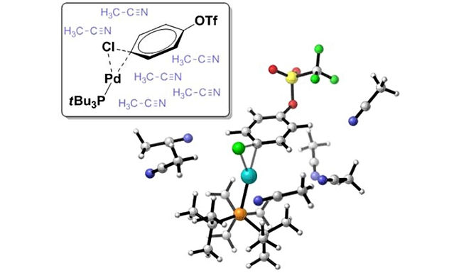 """<p class=""""font_8""""><strong>Oxidative Addition Transition States of Pd(0) complexes in Polar Solvent - A DFT Study Involving Implicit and Explicit Solvation</strong></p>"""