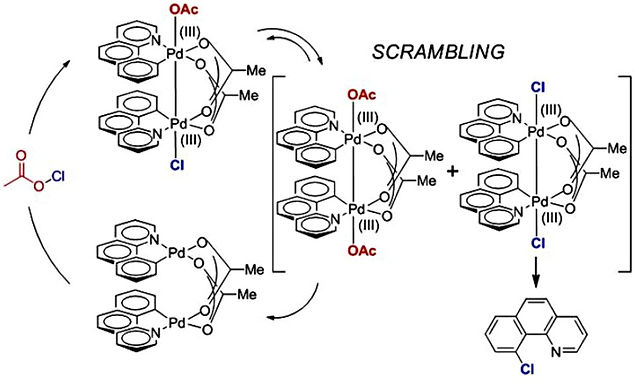 """<p class=""""font_8""""><strong>Chemoselectivity in the Reductive Elimination from High Oxidation State Palladium Complexes - Scrambling Mechanism Uncovered</strong></p>"""