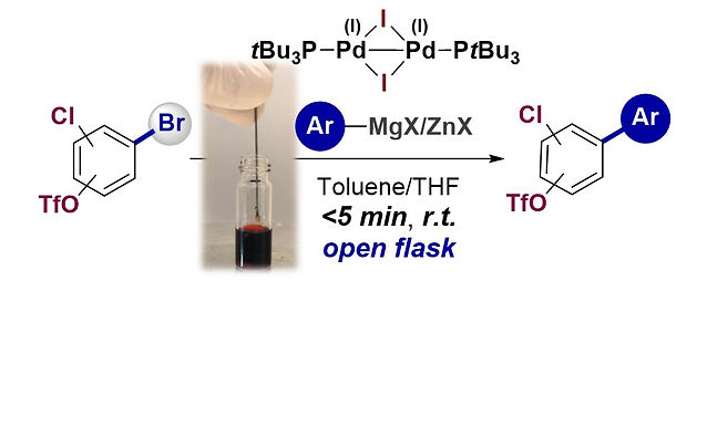 """<p class=""""font_8""""><strong>Rapid Room Temperature Chemoselective C(sp²)-(Csp²) Coupling of Poly(pseudo)halogenated Arenes enabled by Pd(I) Catalysis in Air</strong></p>"""