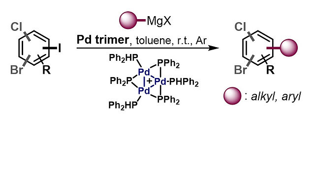 """<p class=""""font_8""""><strong>C-I Selective Cross-Coupling Enabled by a Cationic Pd Trimer</strong></p>"""