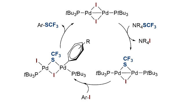 """<p class=""""font_8""""><strong>Trifluoromethylthiolation of Aryl Iodides and Bromides Enabled by a Bench-Stable and Easy-To-Recover Dinuclear Pd(I) Catalyst</strong></p>"""