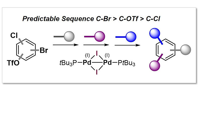 """<p class=""""font_8""""><strong>Modular Functionalization of Arenes in a Triply Selective Sequence: Rapid C(sp²) and C(sp³) Coupling of C-Br, C-OTf &amp; C-Cl enabled by a Single Pd(I) Dimer</strong></p>"""