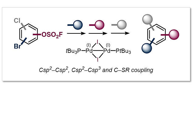"""<p class=""""font_8""""><strong>Site-Selective, Modular Diversification of Polyhalogenated Aryl Fluorosulfates (ArOSO₂F) enabled by an Air-Stable Pd(I) Dimer</strong></p>"""