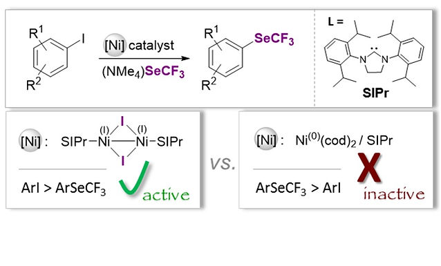 """<p class=""""font_8""""><strong>Divergent Reactivity of a Dinuclear (NHC)Ni(I) Catalyst vs. Ni(0) enables Chemoselective Trifluoromethylselenolation</strong></p>"""