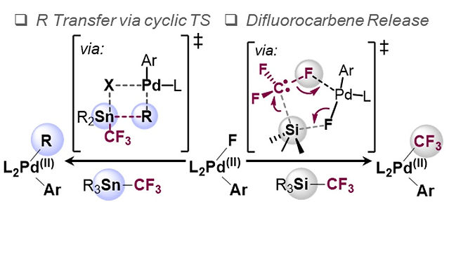 """<p class=""""font_8""""><strong>Divergent Reactivity of Stannane and Silane in the Trifluoromethylation of Pd(II): Cyclic Transition State versus Difluorocarbene Release</strong></p>"""