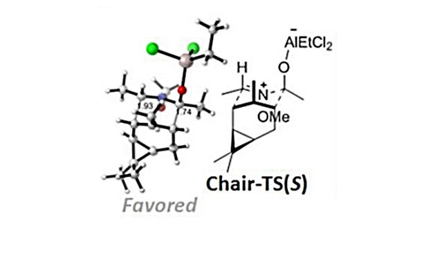 """<p class=""""font_8""""><strong>Tandem Nucleophilic Addition/ Oxy-2-azonia-Cope Rearrangement for the Formation of Homoallylic Amides and Lactams: Total Synthesis and Structural Verification of Motuporamines G</strong></p>"""