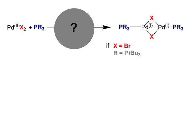 """<p class=""""font_8""""><strong>Understanding the Unusual Reduction Mechanism of Pd(II) to Pd(I): Uncovery of Hidden Species and Implications in Catalytic Cross-Coupling Reactions</strong></p>"""