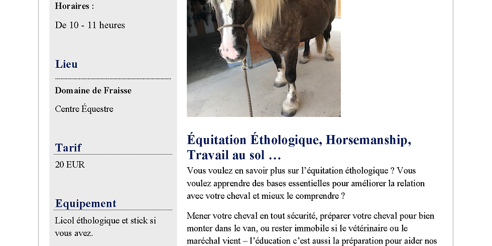Bodenarbeit + Horsemanship + Équitation Étologique