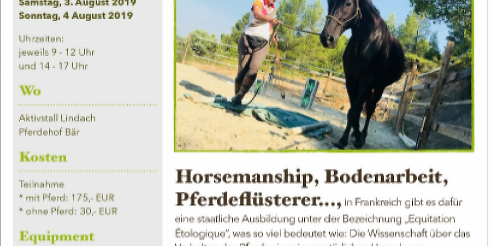 Wochenendlehrgang Aktivstall Pferdehof Bär