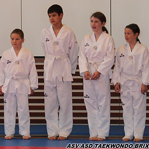Taekwondo Workshop Vilpian