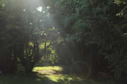 patio zona 2