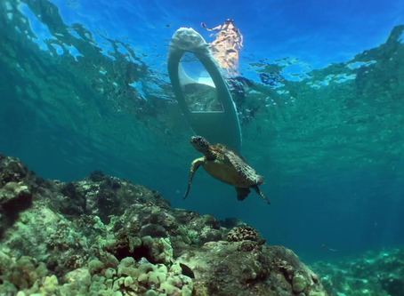 LightSUP Hawaii joins in World Reef Day