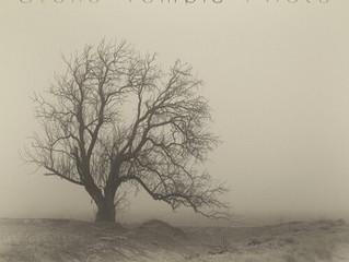 Album Review: Stone Temple Pilots - 'Perdida'