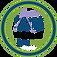 Pinnacle Badge 2020 - PHX FINAL.png