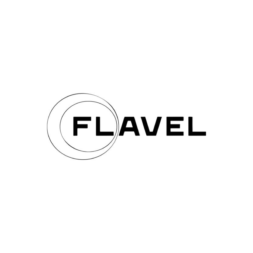 Flavel logo Web size (Wix)-01.jpg