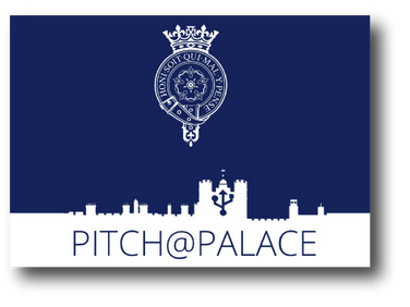 Pitch at the Palace