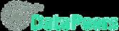 datapeers logo.png