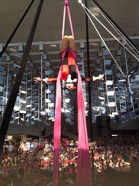 Harley Quinn Aerial Silks