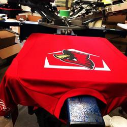 Fish Creek LL Cardinals