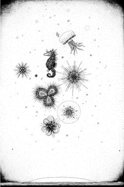 3.Asiya_Korepanova_Liszt_Drawing_Transcendental_Etude_Paysage
