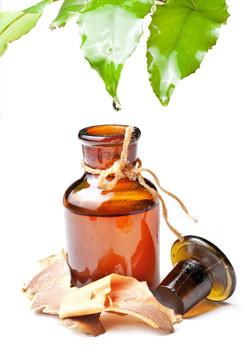 Healing Elixir