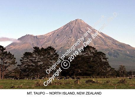 Mt Taupo NIsl NZ 2016 smw.jpg