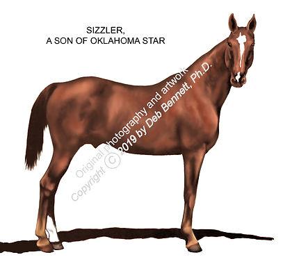 Sizzler Oklahoma Star son AFTER smw.jpg