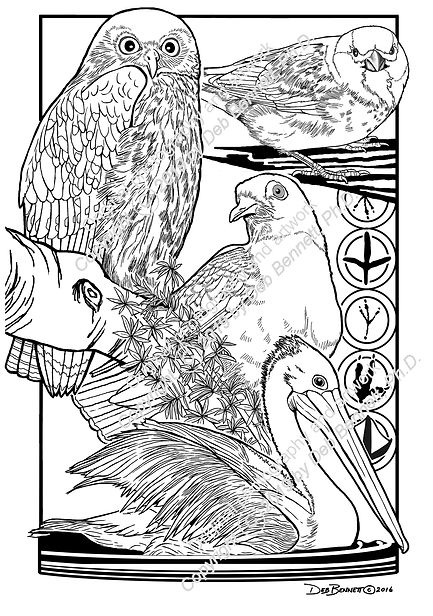Birds Australia Set no1 smw.jpg