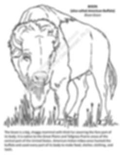Simple Buffalo c text smw.jpg