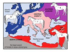Map Pleistocene horse ssp in Europe icon