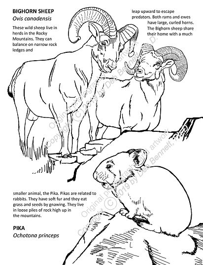 Simple Bighorn sheep and pika c text smw