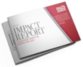 DCC_ImpactReport_Cover.jpg