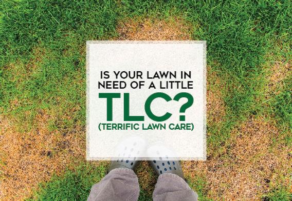 "LandscapingPostcard ""Terrific Lawn Care"""