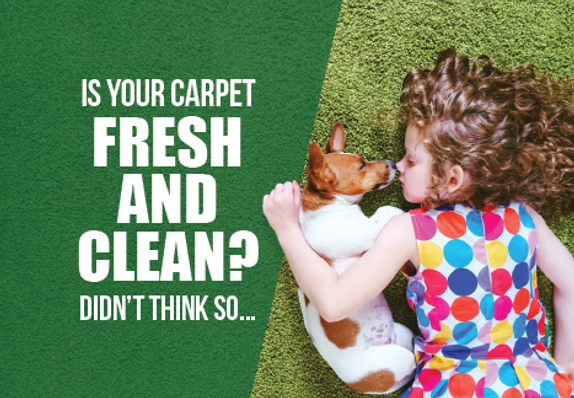 """Carpet Cleaning Postcard """"Fresh and Clean Carpet"""""""