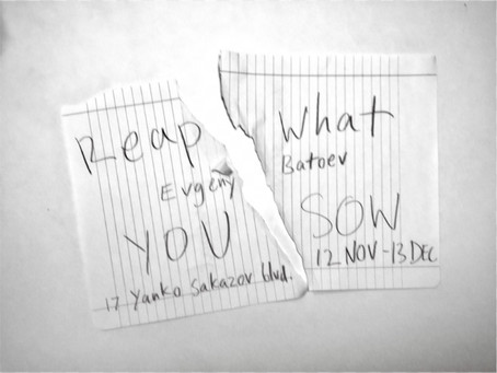 REAP WHAT YOU SOW / Evgeny Batoev