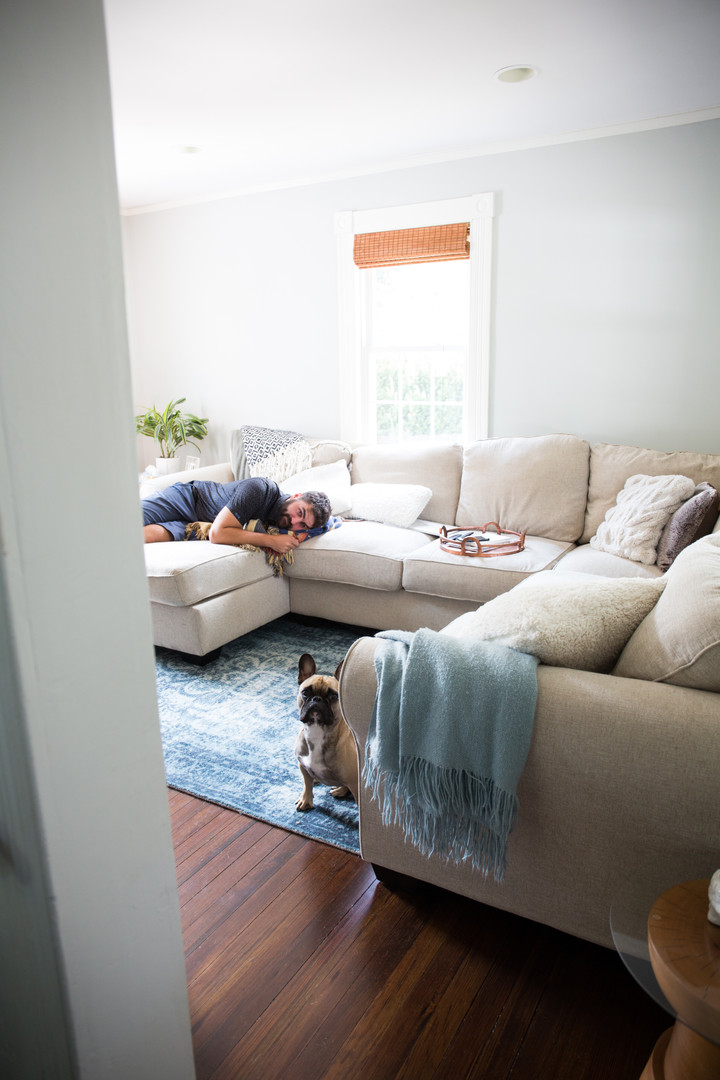 Living room (dog and husband not include