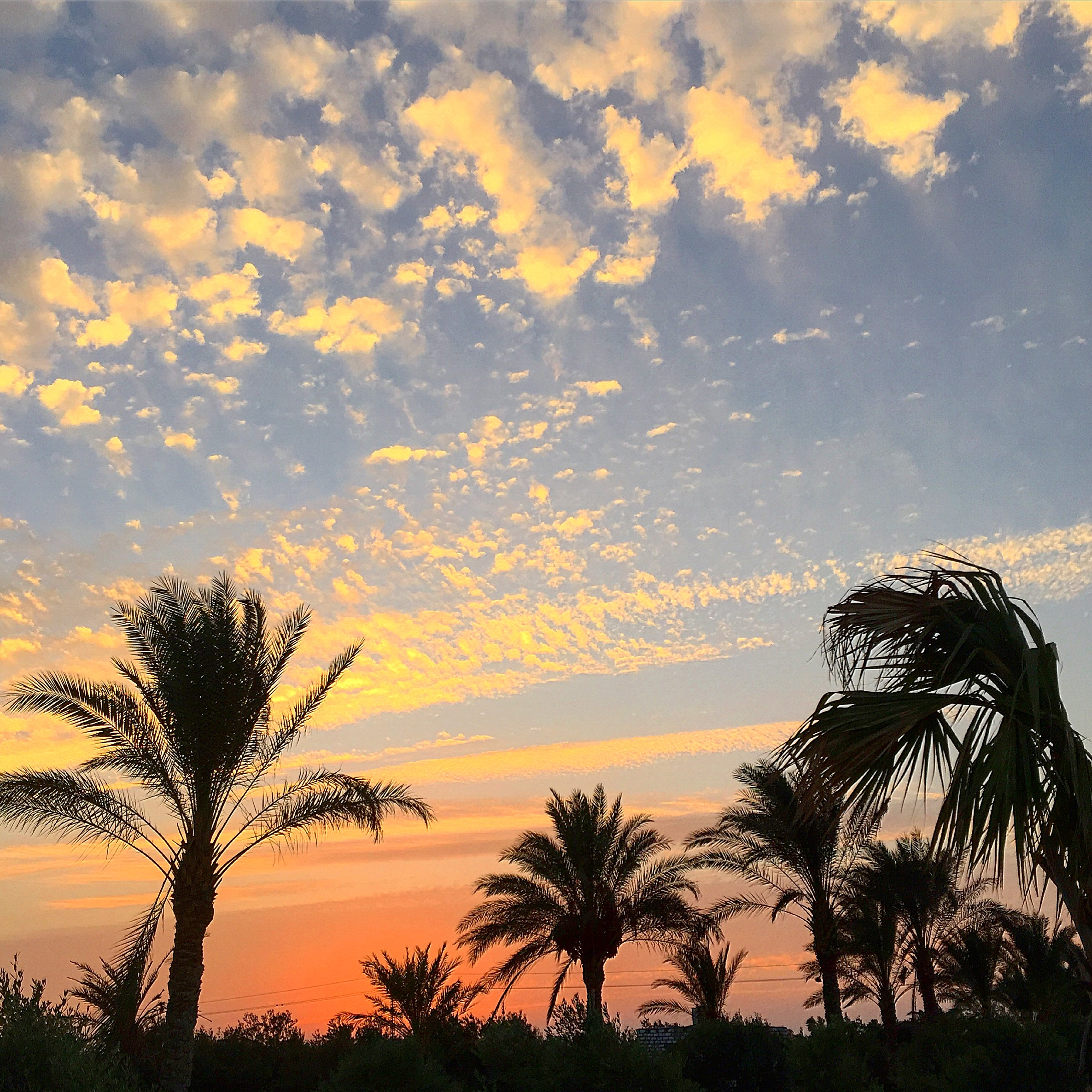 Bawabat, Giza Egypt '15