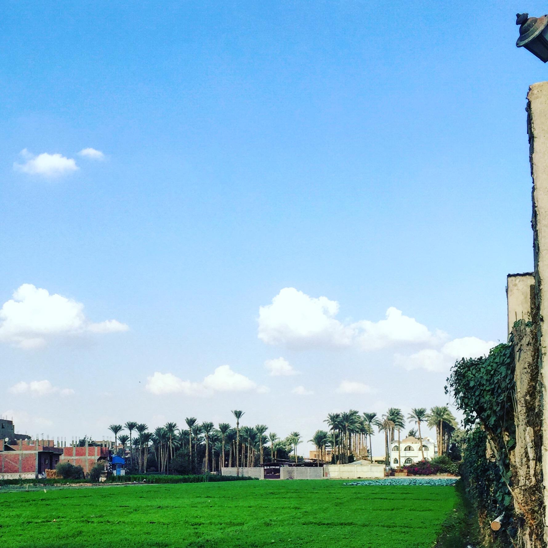 Studio El Ezba, Egypt '15