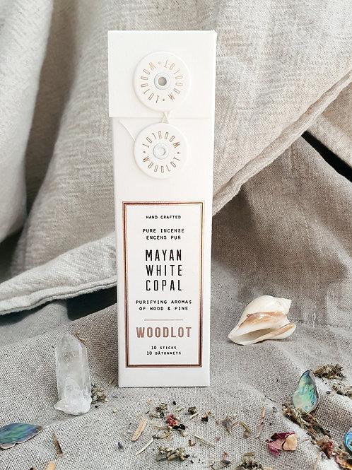 Mayan White Copal - Woodlot