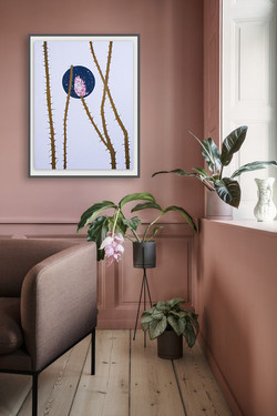 Try dusty pink.